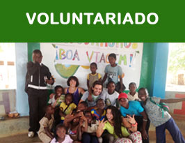 voluntariado2014 copia