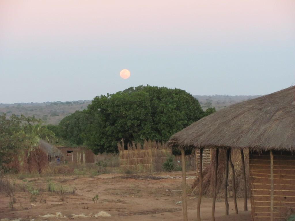 Metoro  Mozambique)