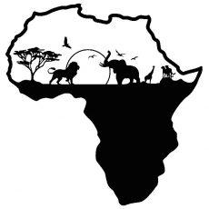 Día de África (III). FASFI en Malawi
